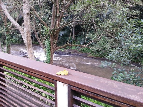 The Samaya Bali Ubud: view from breakfast table