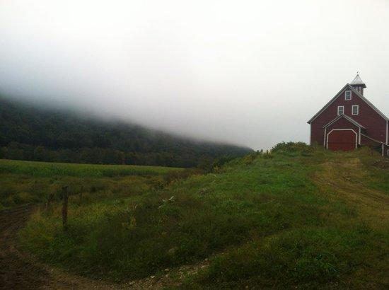 Liberty Hill Farm Inn: morning