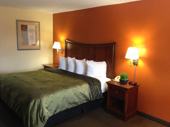 Budget Host Inn : King Guest Room