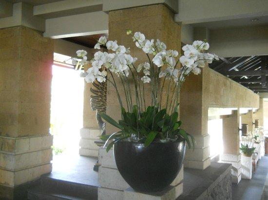 โรงแรมแฮดเลห์: la magnifique réception pour vous accueillir....