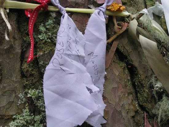The Scottish Wool Centre: Our rags around the tree