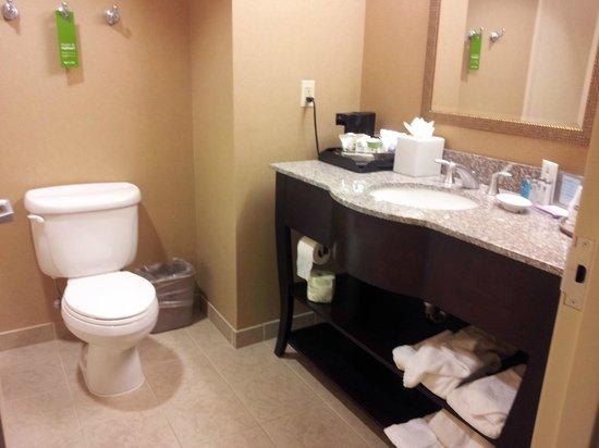 Hampton Inn Baltimore-Downtown-Convention Center: Bathroom