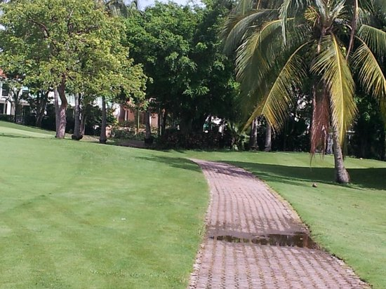Casa Velas: Golf course