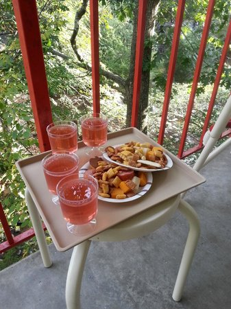 Zoders Inn & Suites: Wine and cheese in the treetops