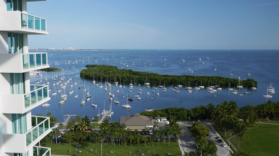 Sonesta Coconut Grove Miami: View from the balcony 1
