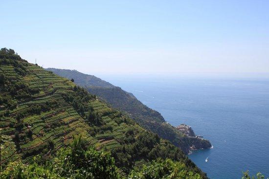 Tre Terrazzi : View over Cinque Terre