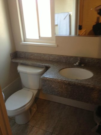 El Dorado Motel: Toilet and Sink