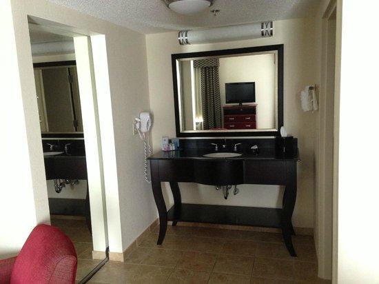 Hampton Inn & Suites Millington: Vanity