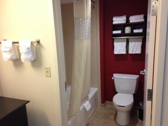 Hampton Inn & Suites Millington: Bathroom