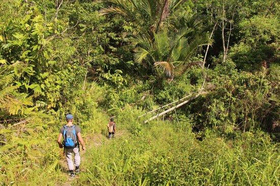 Saloma's Villagestay: trekking naar de waterval
