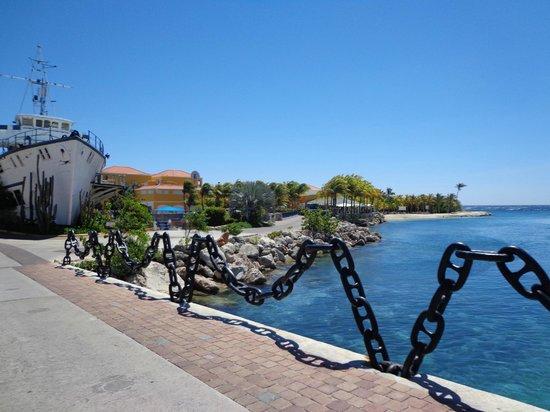 The Royal Sea Aquarium Resort: to get off the resort grounds