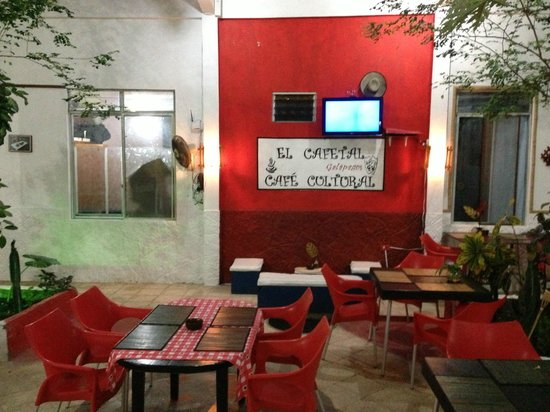 El Cafetal Galápagos: Part of the Garden Room