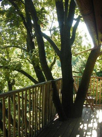 Balconcino picture of bed and breakfast il giardino dei - Il giardino dei semplici manta ...