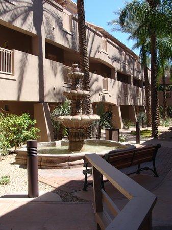 Sheraton Desert Oasis : Resort