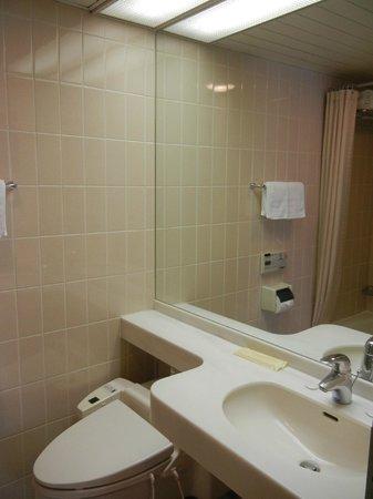 Kitano Arms: Zweckmässiges Badezimmer