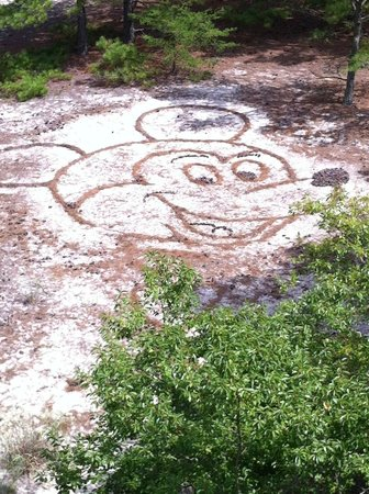 Cape Henlopen State Park Campground: Look down when you're at the top of the towers!