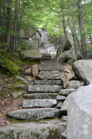 Park Loop Road: Step path up the mountain