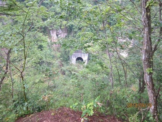 Naruko Gorge: 展望台から絶壁を通る鉄道