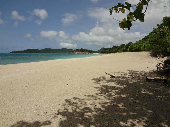 Hermitage Bay: beach