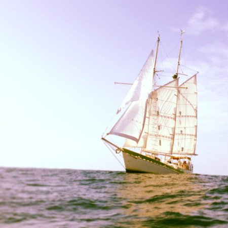 Sailing One World - Day Trips