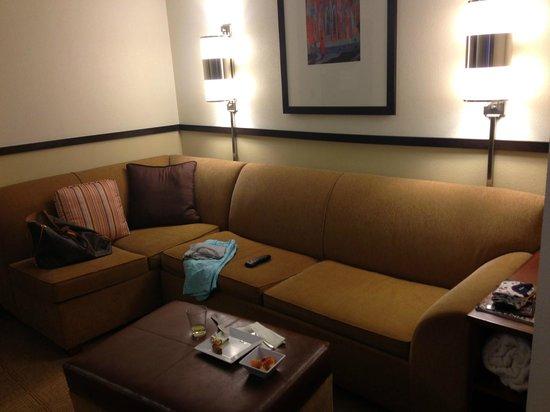 Hyatt Place Nashville/Opryland: sofa area