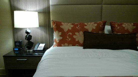 Opera House Hotel: The room