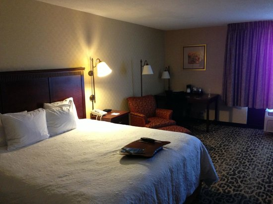 Hampton Inn Salt Lake City-Downtown: Chambre