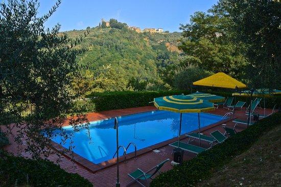 Villa Cecchini : The pool