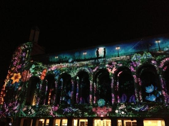 AC 3-D Light Show: Flores