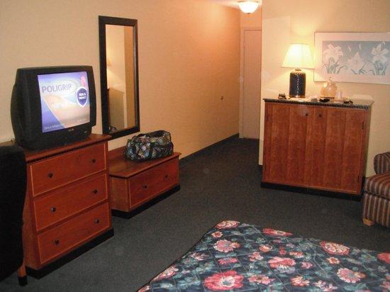 Days Inn & Suites Kalamazoo: King bed room
