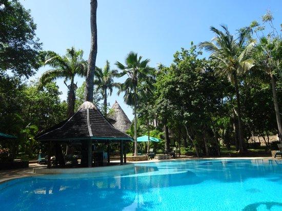 Forest Dream Resort: Het zwembad in de prachtige tropische tuin