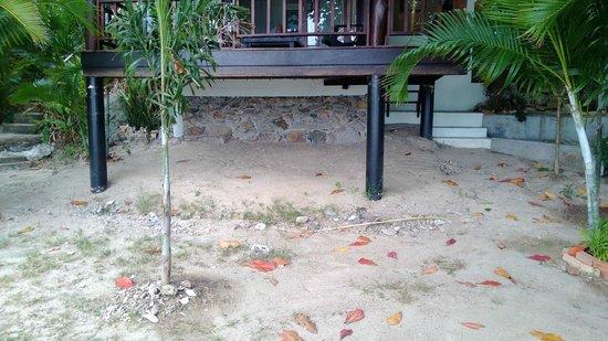 Loyfa Natural Resort: i cocci sotto il bungalow (sulla spiaggia)