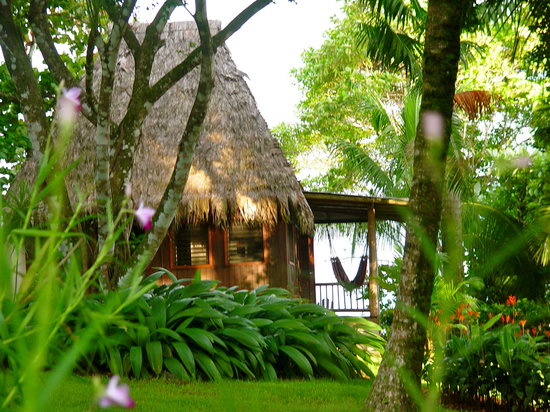 Bosque del Cabo Rainforest Lodge: cabina