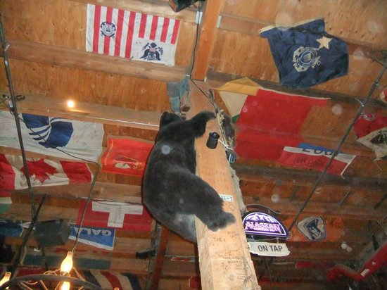 Red Dog Saloon: Sitting under the bear
