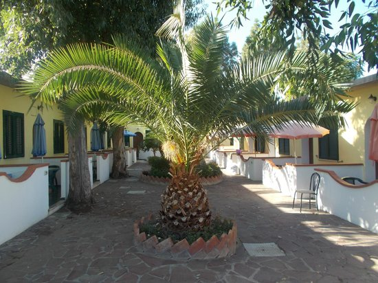 Hotel Villa Hibiscus : giardini esterni