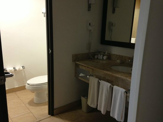 Holiday Inn Express Merida : Bathroom