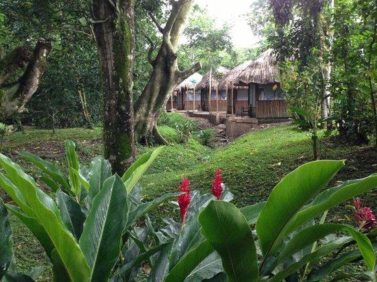 Kin Balam Cabanas: cabañas