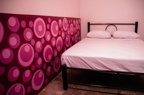 Hikuri Hostel: private room