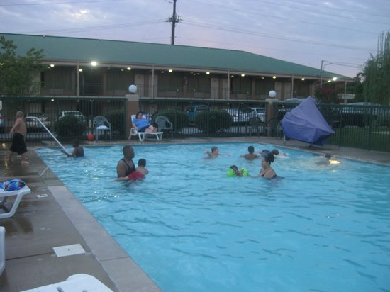 Americas Best Value Inn Nashville North / Goodlettsville: Swimming with My Name is Earl Cast!