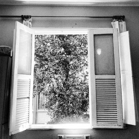 Hostel Republica: Janela do apartamento 22.
