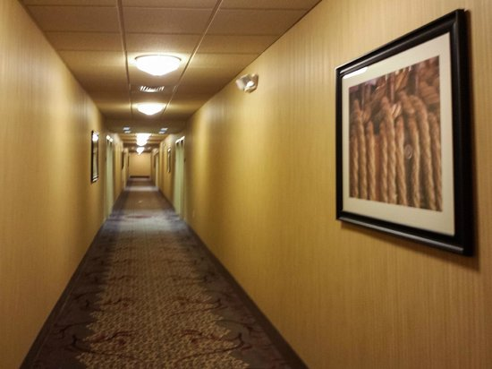 Homewood Suites by Hilton Atlantic City/Egg Harbor Township : The Hallway Leading to Our Room