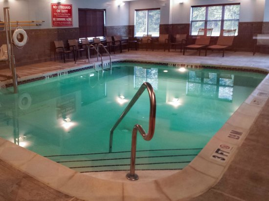 Homewood Suites by Hilton Atlantic City/Egg Harbor Township: Swimming Pool