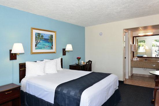 Americas Best Value Inn-Bradenton/Sarasota: One Queen Bed