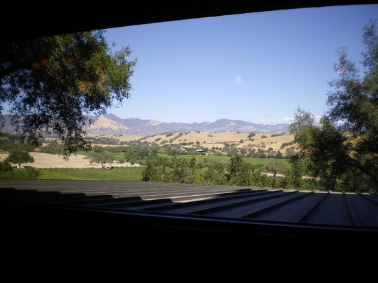 Firestone Vineyard: View from the tasting room