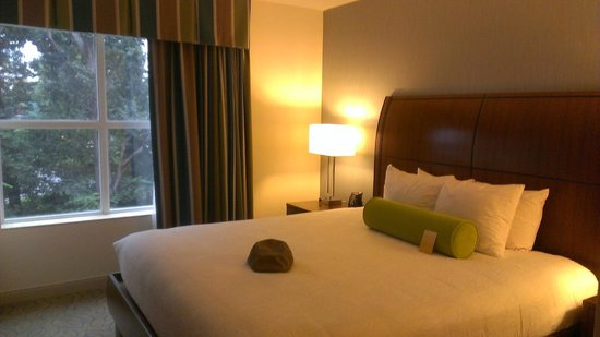 Hilton Garden Inn Atlanta Midtown : sleep