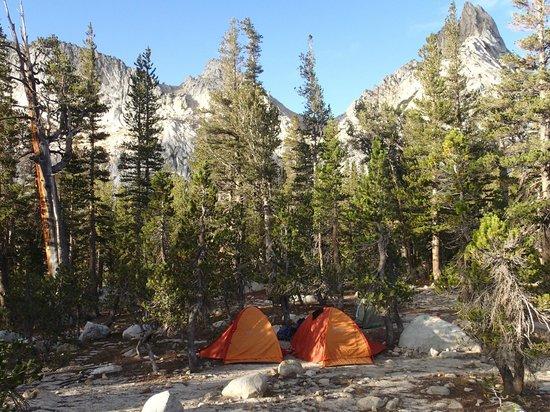 YExplore Yosemite Adventures - Day Tours : Our campsite