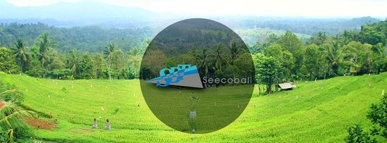Seecobali Tours: Our company logo