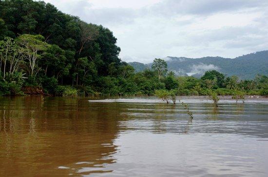 Tukan Tours: Tarcoles River