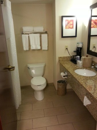Holiday Inn Express & Suites Tupelo: Bathroom