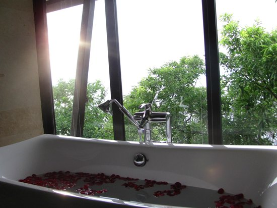 Banyan Tree Cabo Marques: view from bath tub